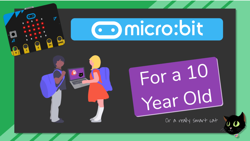 micro:bit for a 10 Year Old